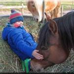 Pferdestunden